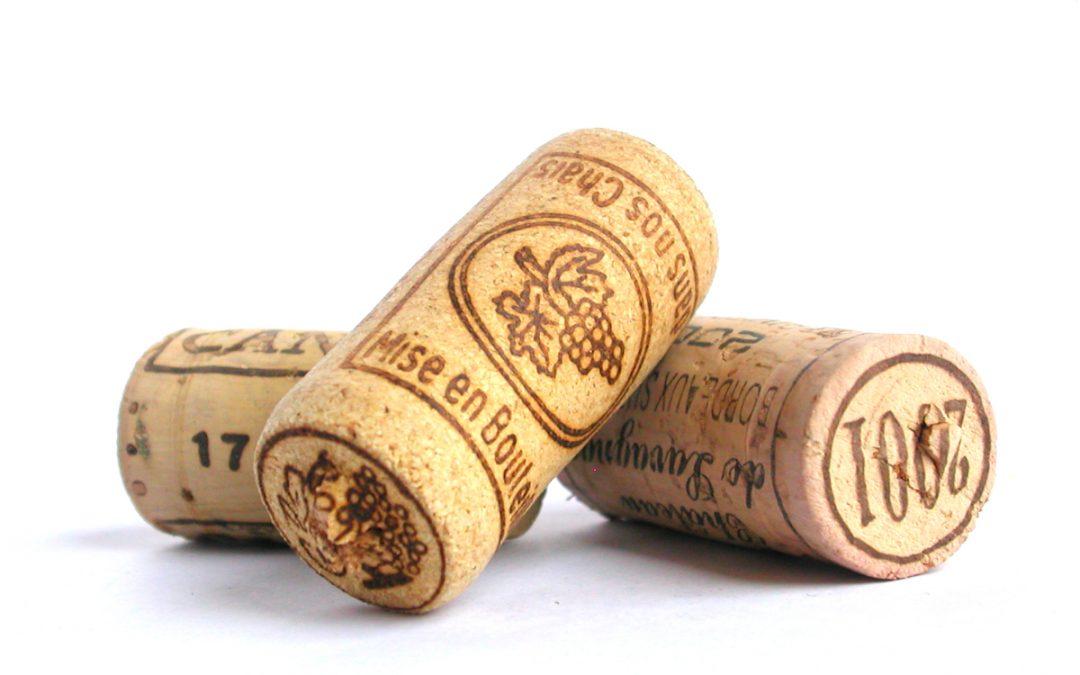 SDEN 1 Cursus Wijnvignet najaar 2020